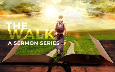 The Walk | Week 2
